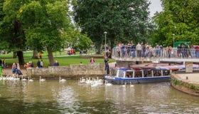 Touristen im Boot umgeben durch Schwäne, Stratford nach Avon, William Shakespeare-` s Stadt, West Midlands, England lizenzfreies stockbild