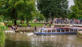Touristen im Boot umgeben durch Schwäne, Stratford nach Avon, William Shakespeare-` s Stadt, West Midlands, England stockfotos