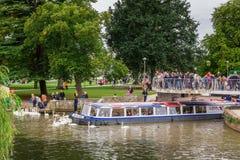 Touristen im Boot umgeben durch Schwäne, Stratford nach Avon, William Shakespeare-` s Stadt, West Midlands, England stockfotografie