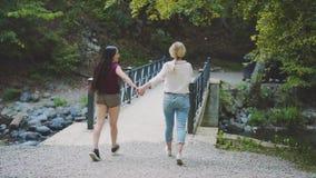 Touristen kamen zu Georgia, sich halten mit der Hand und in Borjomi-Park, gehen Damen langsam entlang Brücke über schnellem freie stock video footage