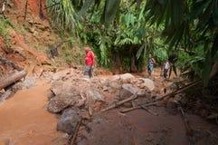 Touristen mit Führerweg im Dschungel lizenzfreie stockfotos