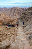 Touristen steigen auf der langen Spur von der Spitze des Bergs Moses ab, Stockbilder