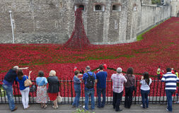 Touristen am Tower von London Poppy Installatio betrachtend Stockbilder