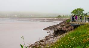 Touristen und lokale Leute beobachten die Flutwellerolle in Moncton, New-Brunswick, Kanada Lizenzfreies Stockbild