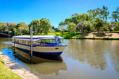 Touristenboot in Adelaide-Stadt Lizenzfreie Stockfotografie