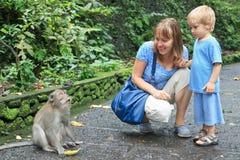 Touristes alimentant le singe Photos stock
