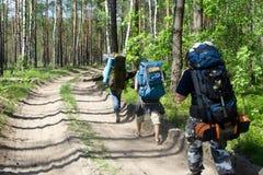 Touristes au bois Image libre de droits