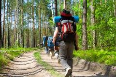 Touristes au bois Photographie stock