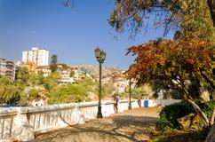 Touristes au point de vue de Valparaiso Image libre de droits