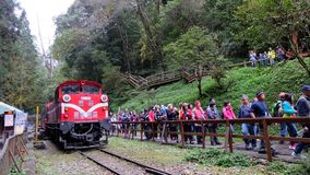 Touristes chez l'Alishan Forest Railway images stock