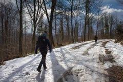 Touristes d'hiver sur la traînée image libre de droits