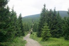 Touristes dans les montagnes géantes Photo libre de droits