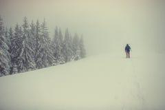 Touristes dans les montagnes neigeuses carpathiens l'Ukraine, l'Europe Image stock