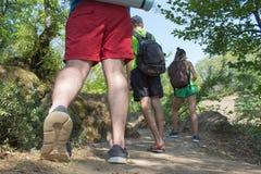 Touristes de groupe de jeunes visitant le pays dans les bois avec le sac à dos, voyage de vacances Photo stock