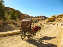 Touristes de transport d'un chariot de cheval sur la route poussiéreuse au coucher du soleil dans PETRA, Jordanie PETRA est l'un  photos stock