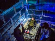 Touristes jouant dans le palais de glace, pays des merveilles d'hiver, Londres, semaine de Noël Image libre de droits