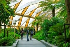 Touristes marchant sur le jardin de toit d'endroit de Crossrail dans Wh jaune canari Photos libres de droits