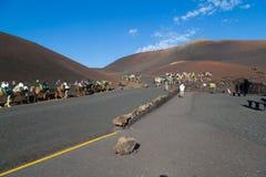 Touristes montant des chameaux en parc national de Timanfaya images stock