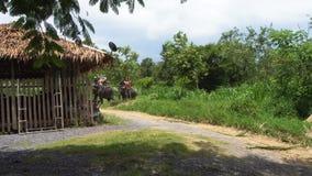 Touristes montant l'éléphant banque de vidéos