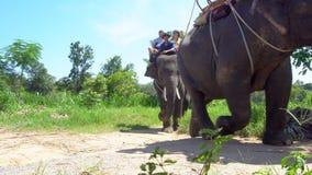 Touristes montant l'éléphant, Thaïlande - 23 juillet 2017 banque de vidéos