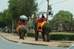 Touristes montant sur des éléphants de retour, la Thaïlande photographie stock