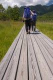 Touristes supérieurs trimardant dans la nature Photo stock
