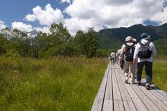 Touristes supérieurs trimardant dans la nature Photo libre de droits