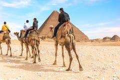 Touristes sur des chameaux près des pyramides de Gizeh, Egypte photographie stock libre de droits