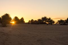 Touristes sur des dromadaires au coucher du soleil dans le désert Photos libres de droits