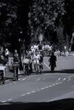 Touristes sur le vélo dans Aalsmeer, Pays-Bas Photos libres de droits