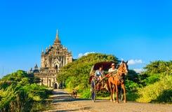 Touristes sur les chariots de cheval et la pagoda, Myanmar Photos stock