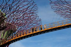 Touristes sur OCBC Skyway entre Supertrees aux jardins par la baie Singapour Images stock