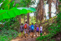 Touristes trimardant dans la jungle profonde du parc national de Khao Yai en Thaïlande Photos stock