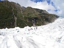 Touristes trimardant sur le glacier de Fox, Nouvelle Zélande Photographie stock libre de droits