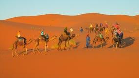 Touristic караван верблюда в пустыне Стоковые Изображения
