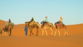Touristic караван верблюда в пустыне Стоковая Фотография RF