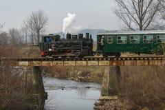 Touristic поезд парового двигателя Стоковые Изображения RF