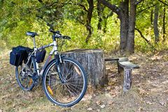 Touristic bicycle in a forest. Near a bench royalty free stock photography