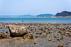 Touristic blå strand för Muuido ö Royaltyfri Fotografi