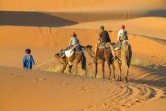 Touristic camel caravan in desert stock photography