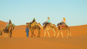 Touristic camel caravan in desert royalty free stock photography