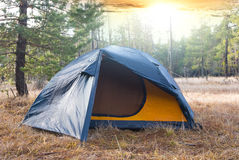 Touristic camp in a forest Stock Photography