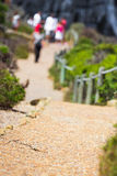 Pathway in the nature. Touristic pathway in the nature near to Cape point in South Africa Royalty Free Stock Photo