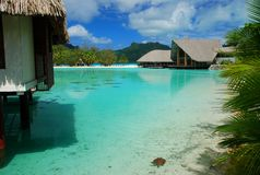 touristic semesterort borafransman polynesia royaltyfri foto