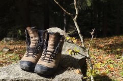 Touristic shoes on a rock in a wood. Selective focus Royalty Free Stock Photo