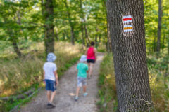 Touristic sign on tree Royalty Free Stock Photography