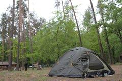 touristic skogtent Royaltyfria Bilder