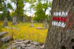 Touristic tecken på träd royaltyfri foto
