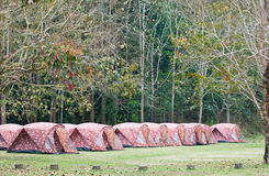 Touristic tent in forest Stock Image
