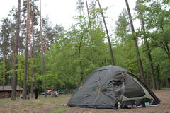 Touristic tent in a forest. Many sneakers royalty free stock images